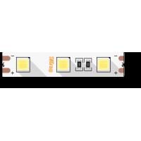 Лента светодиодная SWG SWG560-4.1