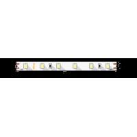 Лента светодиодная SWG PRO SWG2P60