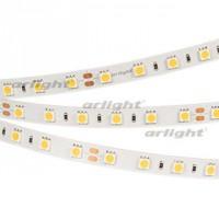 Светодиодная лента RT 2-5000 24V White6000 2x (5060, 300 LED, LUX)