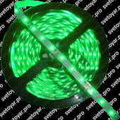 Светодиодная лента ECO-3528/60-IP20-12V-  G  -5m (зеленый свет) Jazzway
