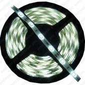 Светодиодная лента 12V ECO-5050/5060, 30, IP65, W (белый свет)