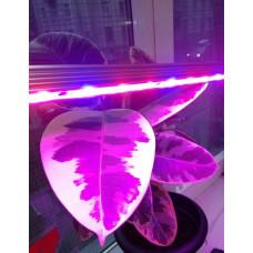 Светильник для растений PPG T8i- 600  Agro  8w IP20  Jazzway Jazzway 5000742