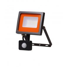 Светодиодный прожектор PFL -SC-  30w sensor 6500K IP54 (матовое стекло) Jazzway